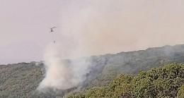 Tunceli'de hava güçleriyle yangına müdahale sürüyor